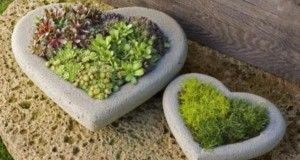 Конструкции для растений на участке