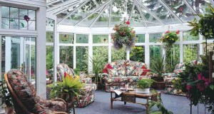 Как обустроить зимний сад (часть 1)